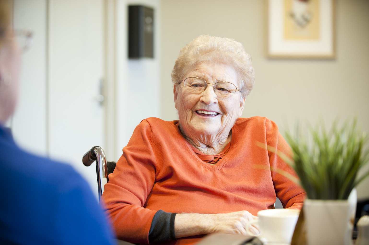 dental treatment at aged care facilities hobart orofacial pain